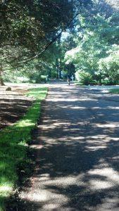 stamford driveway repave